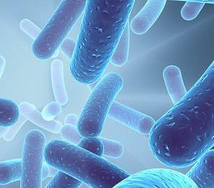 Bakterie legionella w klimatyzacji